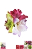 Dozen Assorted Color Flower Hairclip