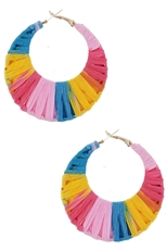 A Dozen Assorted Color Fashion Hoop Earring