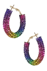 A Dozen Assorted Color Rhinestone Hoop Earring