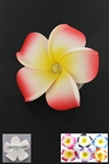 Dozen Assorted Color Hawaiian Flower Hairclip
