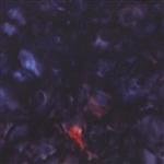 Hoffman Bali Handpaints Blackberry 839-85 Half Yard