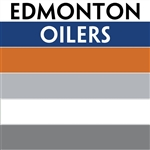 Edmonton Oilers team colors custom printed mini hockey stick. Personalized mini hockey stick by ministixx.