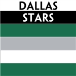 Dallas Stars team colors custom printed mini hockey stick. Personalized mini hockey stick by ministixx.