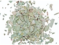 Wholesale Eucalyptus Leaves