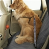 High Road Wag'nRide Dog Seat Belt Tether for Cars