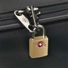 Smooth Trip<br>TSA Accepted Luggage Key Locks - 2 pack - Brass
