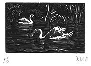 Signed wood engraving by Diana Bloomfield
