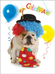 1347 BD Dog as clown with balloons