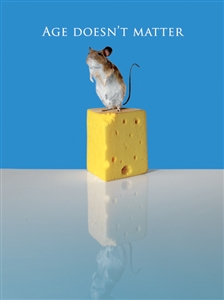 1393 BD Mouse on cheese
