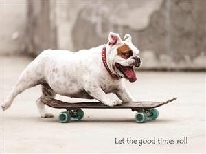 1413 BD Dog skateboards