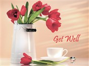 5138 GW Red tulips, tea cup