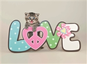 6127 LV Cat on love sign
