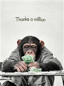 6443 TY Chimp counts money