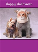 7119 HW Cat & dog wear masks