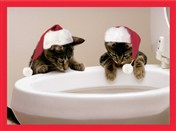 7523BX CH Cats w/ hats at toilet