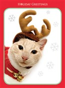 7560BX CH Cat as reindeer