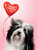 8159 VL Dog, heart balloon