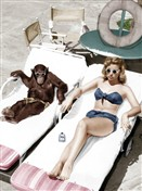 8535 MD Lady & chimp tanning