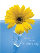 8541 MD Daisy in glass vase on blue