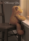 PHP040 MY Teddy at window