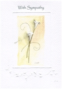 S554-SY SY Arum lily