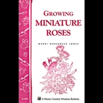 Gardening How-To Book: Growing Miniature Roses