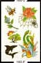 J.D. Crowe Temporary Tattoos 160-F