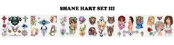 Shane Hart Flash Set III