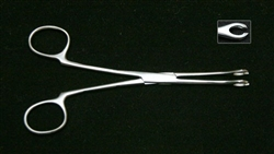 "Sponge (Foerster) Forceps 3/8"" Head SLOTTED"