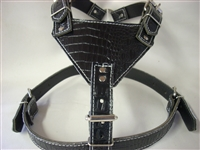 BLACK GATOR HARNESS