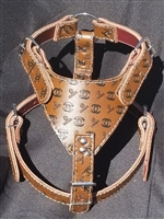 Brown Harness CC