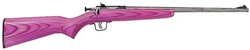 Crickett Youth Crickett Youth Stainless Laminate in .22LR