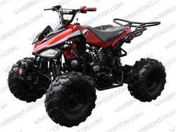 COOLSTER 3125C-2 | Semi Auto 125cc ATV