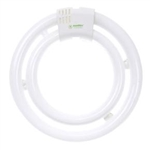 FC40/2C/41K 40 Watt Double Circline Cool White GU10q Base, RHINE FHD40EL 40W Replacement, FHD40EL 40W,#05745, #05745-SU, Cool White Replacement bulb for Hampton Bay Ceiling Fans