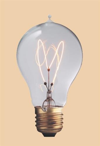 60a19e26vic 120v 60 watt carbon filament a19 bulb e26 base - Antique Light Bulbs