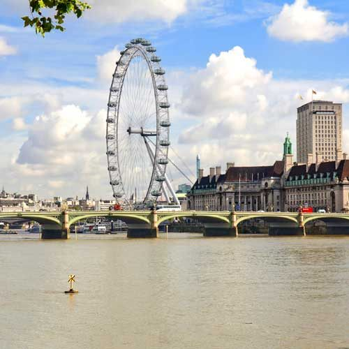 Shore Trips - London with Southampton to Heathrow Transfer