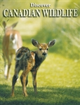Playing Cards Canadian Wildlife