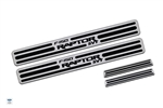 Ford Raptor, 2009+, Two Tone Door Sill, Crew Cab, Brushed Finish, set of 4 DEF-901101