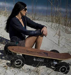 EREV Bruiser 800 Offroad Series Motorized Electric SkateBoard by Electric Revolution