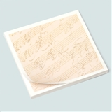 Mozart Manuscript Sticky Notes