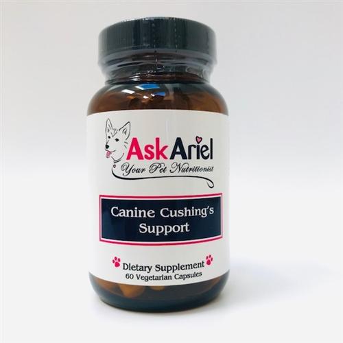 Canine Heart Disease Natural Treatment