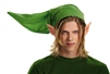 Legend of Zelda Link Adult Costume Kit