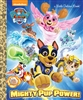 Paw Patrol Mighty Pup Power Little Golden Book