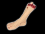 Severed Foot Prop