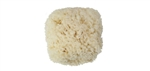 6 EACH LARGE SEA WOOL SPONGES