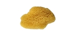 12 MEDIUM SILK SPONGES