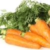 Carrot - Royal Chantenay | The Good Seed Company