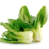 Greens - Pak Choi | The Good Seed Company