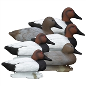 Standard Canvasback, Foam Filled