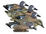 Standard Blue Wing Teal, Foam Filled